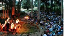 people attending an outdoor concert in a forest amphitheatre