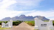 Alto-wine-estate-entrance